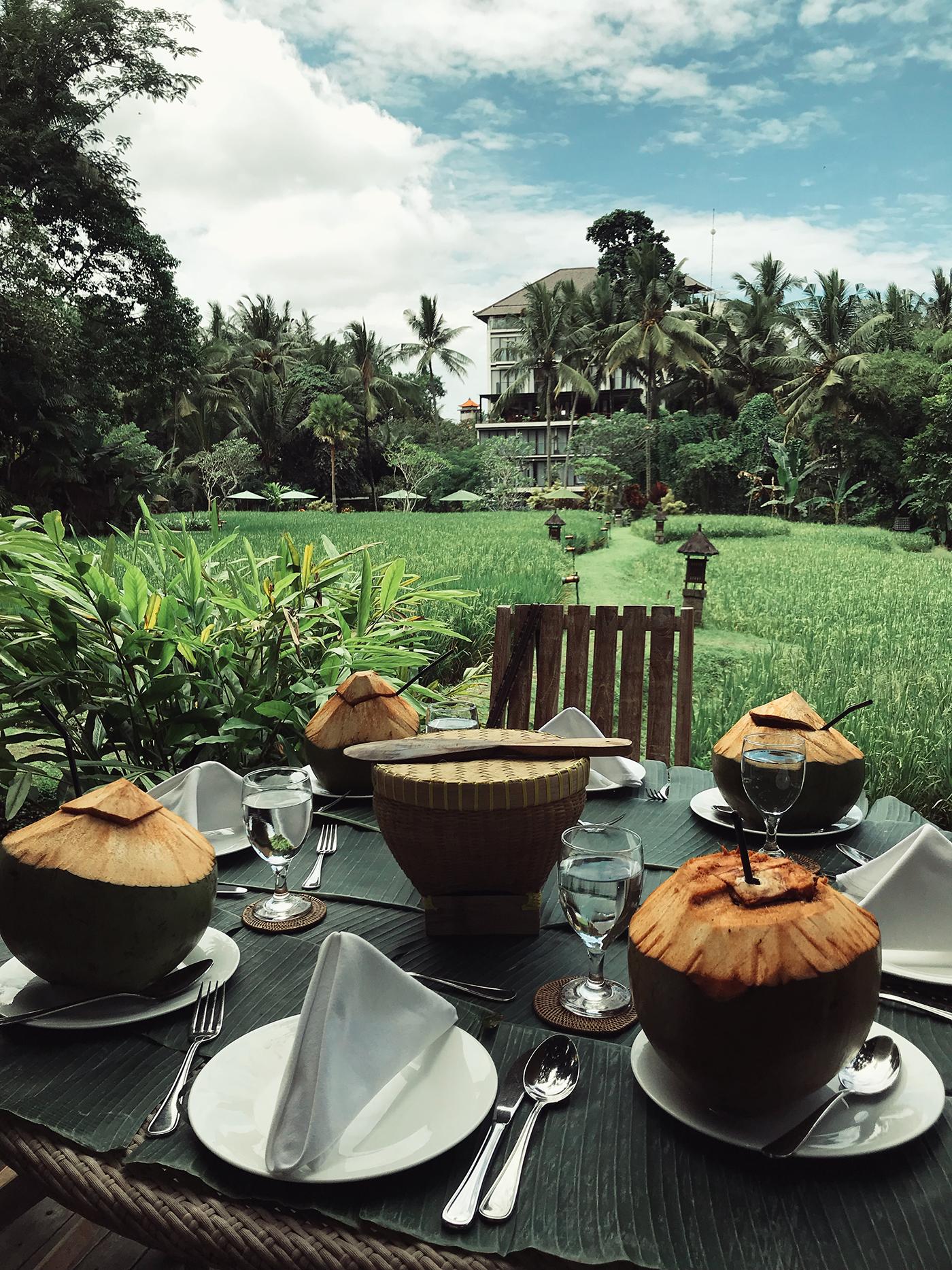 bali_plataran ubud hotel and spa